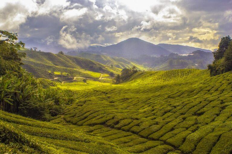3 smukke rejsedestinationer i Asien